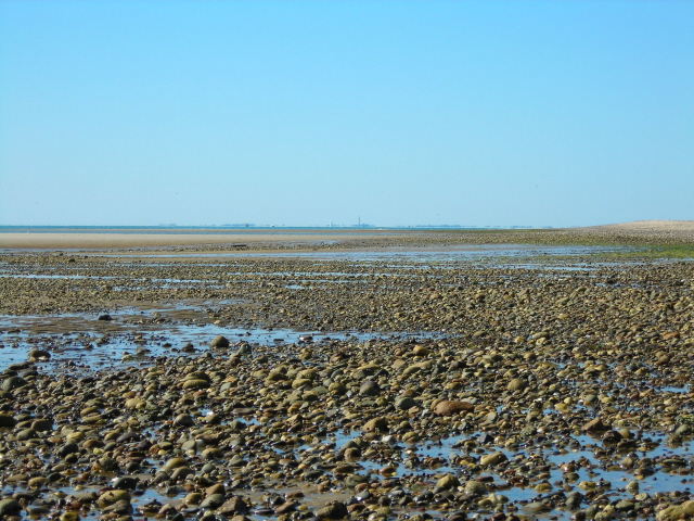 Cape Cod Low Tide Part - 33: Great Island Bay Side Low Tide Looking North, Cape Cod ...