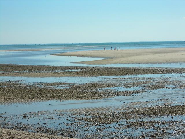 Cape Cod Low Tide Part - 22: Great Island Bay Side At Low Tide Looking Southwest.. Cape Cod ...